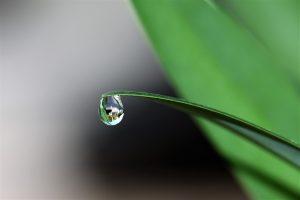 Schoonmaken met alleen water: een groen sprookje. Crohill Pim Hilgerdenaar